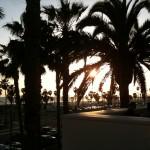 Beautiful Southern California day