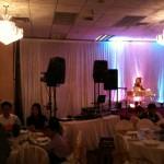 Basic speaker system and dance lighting
